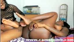 Só negras africanas esfregando as bucetas