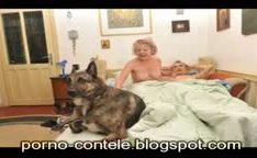 Casal de idoso na cama com cachorro enorme
