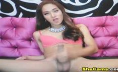 Hot Asian Shemale Is Jerking Off Her Cock