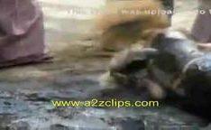 Lana Clarkson em luta com com seios de fora